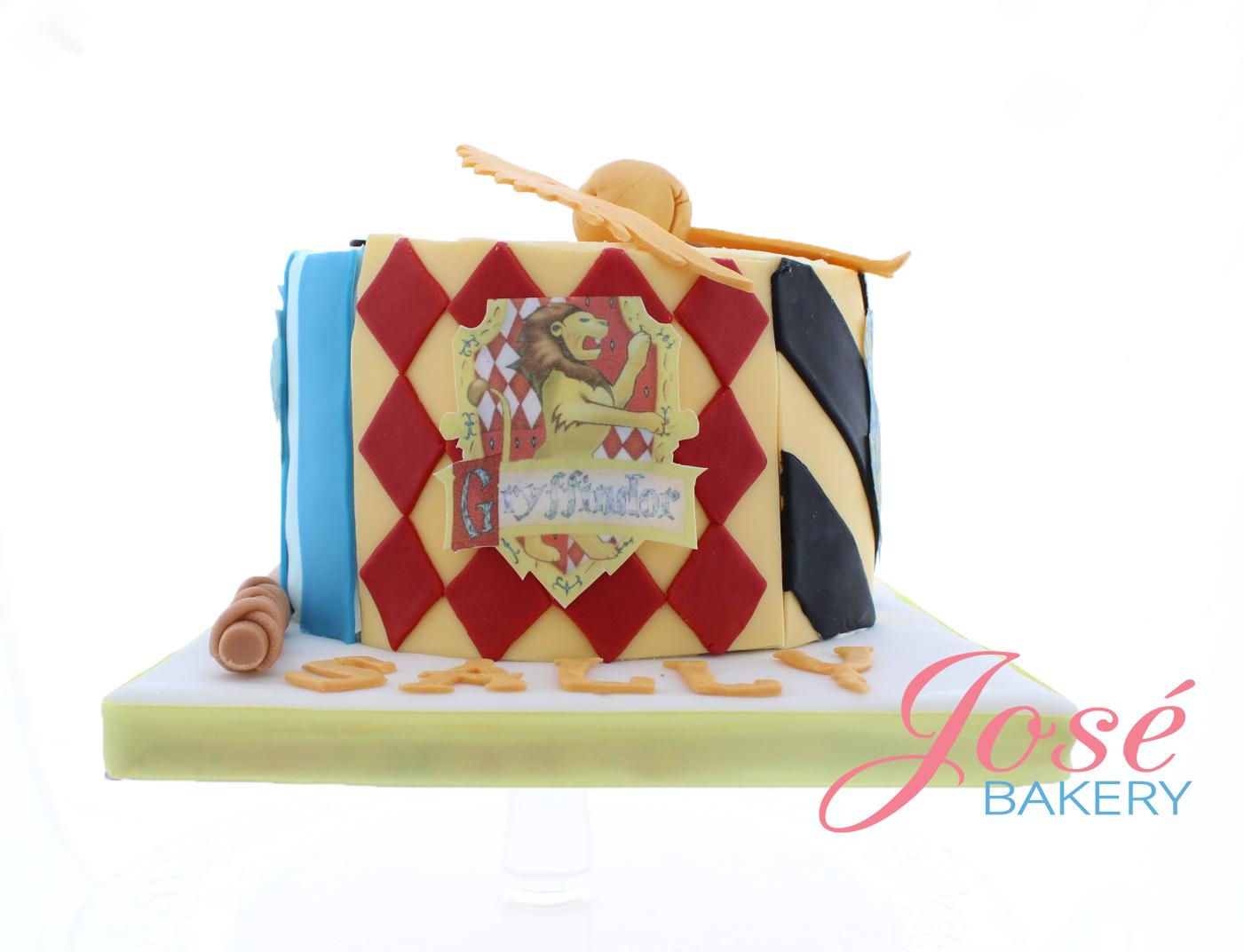 Bekend Harry Potter taart 9 personen bestellen voor een verjaardag  @DV-63