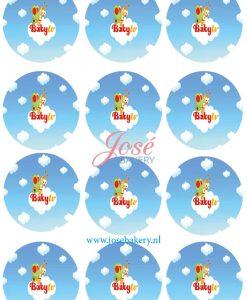 BabyTV cupcake prints 12 stuks