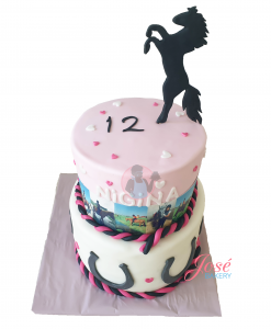 Paarden taart met eetbare prints 16 personen
