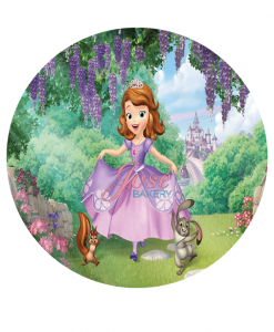 Prinses Sofia taart print 20 cm